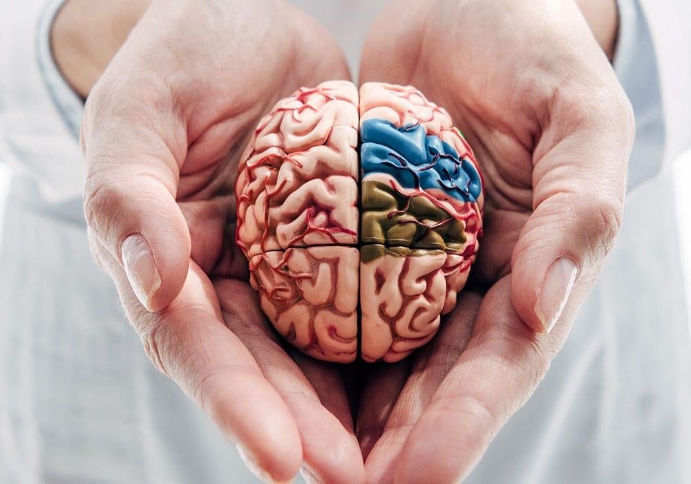 Estimulación magnética transcraneal: Profundizando en la depresión. Imagen obtenida de: https://neurocenter.mx/wp-content/uploads/2021/03/cifras-del-cerebro.jpg